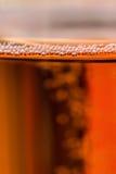 Οι φυσαλίδες Brut CHAMPAGNE αυξήθηκαν Στοκ εικόνες με δικαίωμα ελεύθερης χρήσης