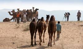 Οι φωτογράφοι παίρνουν τις εικόνες στην έκθεση Pushkar, Ινδία Στοκ Εικόνες
