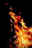 Οι φλόγες, καίγοντας πυρκαγιά Απομονωμένος στη μαύρη ανασκόπηση Στοκ Εικόνα