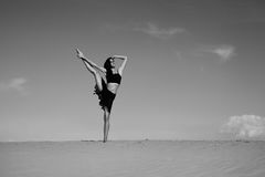 Οι χοροί ballerina στην έρημο Στοκ Εικόνες