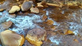 Οι χρυσοί βράχοι Στοκ Εικόνες