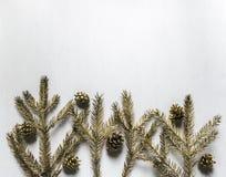 Οι χρυσοί κλαδίσκοι έλατου και οι επιχρυσωμένοι κώνοι βρίσκονται σε ένα άσπρο υπόβαθρο στο τ Στοκ Φωτογραφία