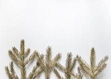 Οι χρυσοί κομψοί κλάδοι βρίσκονται όπως τα δέντρα σε μια σειρά στο κατώτατο σημείο επάνω Στοκ φωτογραφία με δικαίωμα ελεύθερης χρήσης