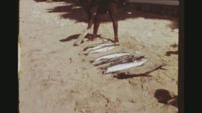 Οι ψαράδες εκθέτουν τη σύλληψή τους στην παραλία απόθεμα βίντεο