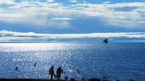 Οι ψαράδες φέρνουν μια σύλληψη των ψαριών από μια βάρκα σε έναν σάκο στοκ φωτογραφία