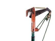 Οι ψαλίδες ψαλίδων περικοπής κόβουν τους κλάδους που απομονώνονται στο άσπρο υπόβαθρο Στοκ εικόνες με δικαίωμα ελεύθερης χρήσης