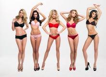 Οι όμορφες γυναίκες στην πλήρη αύξηση θέτουν Στοκ Εικόνες