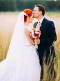 Οι όμορφες νεολαίες καλλωπίζουν tenderly να φιλήσουν στο μέτωπο την όμορφη νύφη redhair του, που απολαμβάνει την ημέρα γάμου Στοκ εικόνες με δικαίωμα ελεύθερης χρήσης