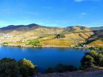 Οι Terraced αμπελώνες διαμορφώνουν τις βουνοπλαγιές της κοιλάδας ποταμών της Πορτογαλίας ` s Douro στοκ εικόνα με δικαίωμα ελεύθερης χρήσης
