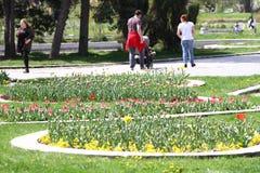 Οι Unrecognizable άνθρωποι περπατούν και χαλαρώνουν στο πάρκο στην άνοιξη Ηλιόλουστη καιρική έννοια Οι άνθρωποι περπατούν σε ένα  Στοκ εικόνες με δικαίωμα ελεύθερης χρήσης