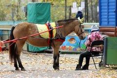 13 Οκτωβρίου 2018 Ρωσία, Izhevsk Άλογο που οδηγιέται από τα παιδιά στο πάρκο στοκ φωτογραφία