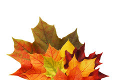 Οκτώβριος στοκ εικόνες με δικαίωμα ελεύθερης χρήσης