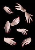 Οκτώ χέρια γυναικών που απομονώνονται Στοκ εικόνες με δικαίωμα ελεύθερης χρήσης