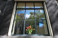 Ολλανδία στο παράθυρο Στοκ εικόνες με δικαίωμα ελεύθερης χρήσης
