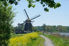 ολλανδική άνοιξη μύλων Στοκ Εικόνα