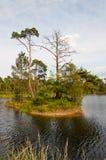 ολλανδική λίμνη νησιών μικ&rho Στοκ Εικόνα