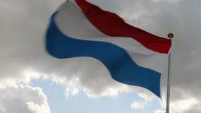 Ολλανδικός κυματισμός σημαιών απόθεμα βίντεο