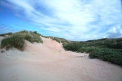 ολλανδικό τοπίο αμμόλοφ&omeg Στοκ Εικόνες