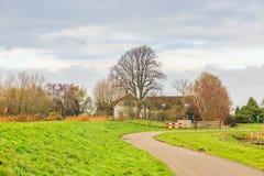 Ολλανδικό τοπίο κατά μήκος του ποταμού Rotte και Rottemeren στοκ φωτογραφίες