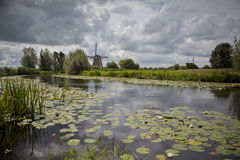 ολλανδικό τοπίο Στοκ Εικόνα