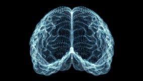 Ολογραφικός εγκέφαλος μορίων ελεύθερη απεικόνιση δικαιώματος