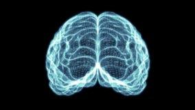 Ολογραφικός εγκέφαλος 4K πλέγματος απεικόνιση αποθεμάτων