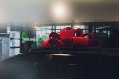 Ολοκαίνουργια αυτοκίνητα στο απόθεμα Μέρος οχημάτων αντιπροσώπων Νέα αγορά αυτοκινήτων στοκ φωτογραφία με δικαίωμα ελεύθερης χρήσης