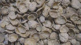 Ολόκληρα δημητριακά σιταριού που περιέρχονται στο κύπελλο για το πρόγευμα φιλμ μικρού μήκους
