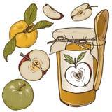 Ολόκληρα μήλα, περικοπή στα μισά και φέτες καθορισμένες Στοκ φωτογραφία με δικαίωμα ελεύθερης χρήσης