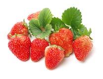 Ολόκληρη ώριμη φράουλα με τα πράσινα φύλλα στοκ εικόνες