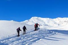 Ομάδα ανθρώπων που στα πλέγματα σχήματος ρακέτας και το πανόραμα χιονιού βουνών με το μπλε ουρανό στις Άλπεις Stubai Στοκ εικόνα με δικαίωμα ελεύθερης χρήσης