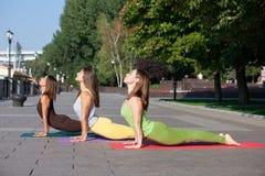 Ομάδα γυναικών που παρευρίσκονται στην άσκηση γιόγκας στο πάρκο στοκ εικόνα