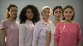 Ομάδα γυναικών που φορούν τα ρόδινες ενδύματα και τις κορδέλλες, που παλεύει ενάντια στο καρκίνο του μαστού απόθεμα βίντεο