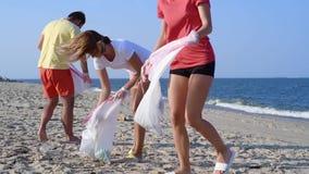 Ομάδα εθελοντών που καθαρίζουν επάνω τη γραμμή παραλιών Οι άνθρωποι αυξάνουν και ρίχνουν ένα πλαστικό μπουκάλι στην τσάντα απόθεμα βίντεο