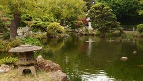 Ομάδα ζωηρόχρωμων ψαριών στην ιαπωνική λίμνη κήπων Στοκ Φωτογραφίες