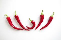 Ομάδα κόκκινων πιπεριών τσίλι που απομονώνεται στο άσπρο υπόβαθρο, επιλογές σχεδίου εστιατορίων στοκ εικόνες