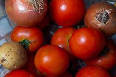 Ομάδα λαχανικών Στοκ φωτογραφία με δικαίωμα ελεύθερης χρήσης