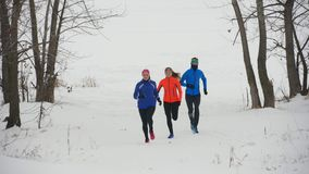 Ομάδα νέων αθλητών που τρέχουν τεχνικά στο χειμερινό δάσος απόθεμα βίντεο