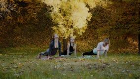 Ομάδα νέων γυναικών που κάνουν την άσκηση δράσης γιόγκας υγιή στο πάρκο Έννοια τρόπου ζωής υγείας φιλμ μικρού μήκους