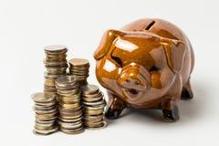 Ομάδα νομίσματος που απομονώνεται στο λευκό με τη piggy τράπεζα Στοκ Φωτογραφία
