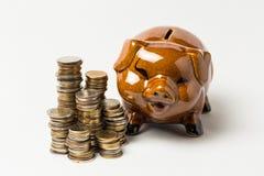 Ομάδα νομίσματος στο λευκό με τη piggy τράπεζα Στοκ φωτογραφία με δικαίωμα ελεύθερης χρήσης