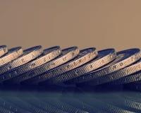 Ομάδα νομισμάτων αξίας δύο ευρώ ευρο- ευρώ πέντε εστίαση εκατό τραπεζών σχοινί σημειώσεων χρημάτων Στοκ Εικόνες