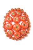 Ομάδα ντομάτα-19 Στοκ Εικόνες