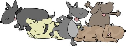 ομάδα σκυλιών απεικόνιση αποθεμάτων