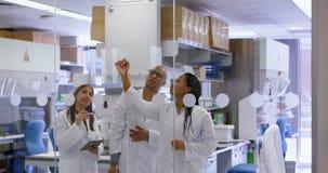 Ομάδα του επιστήμονα που συζητά στον τοίχο γυαλιού 4k απόθεμα βίντεο
