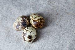 Ομάδα τριών αυγών ορτυκιών σε ένα χειροποίητο τραπεζομάντιλο, τοπ άποψη, κινηματογράφηση σε πρώτο πλάνο, εκλεκτική εστίαση, διάστ Στοκ φωτογραφία με δικαίωμα ελεύθερης χρήσης