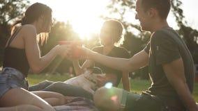 Ομάδα τριών φίλων που πίνουν στο πάρκο από τα κόκκινα πλαστικά φλυτζάνια καθμένος στην πράσινη χλόη με το Μαύρο και απόθεμα βίντεο