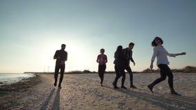 Ομάδα φίλων που έχουν τη διασκέδαση στην ακτή απόθεμα βίντεο