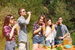 Ομάδα φίλων που έχουν το πικ-νίκ στο πάρκο Στοκ Φωτογραφία