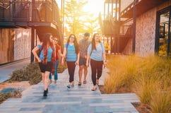 Ομάδα φίλων που περπατούν μιλώντας και γελώντας στοκ εικόνες με δικαίωμα ελεύθερης χρήσης